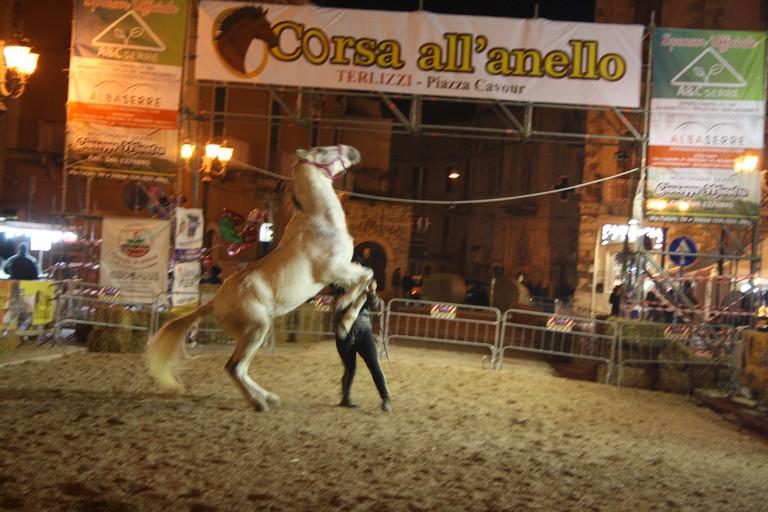 Corsa allanello JPG. <span>Foto Cosma Cacciapaglia</span>
