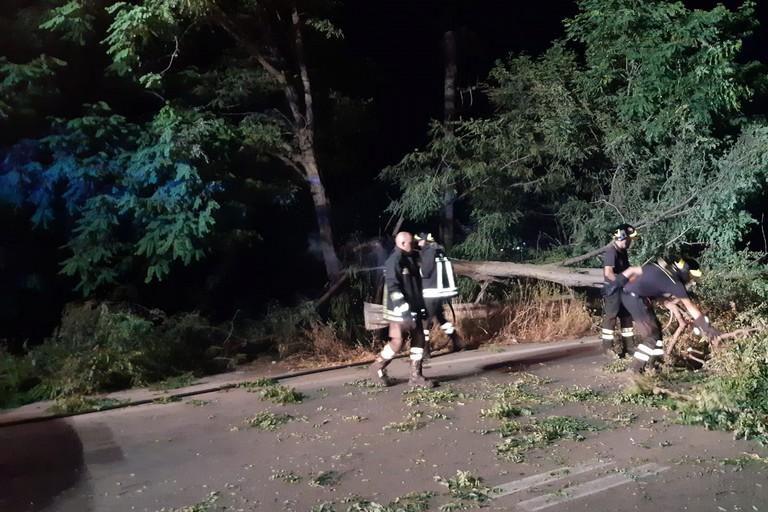 Albero caduto sulla strada per Mariotto