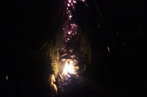 La palma in fiamme