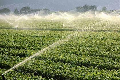 agricoltura irrigazione