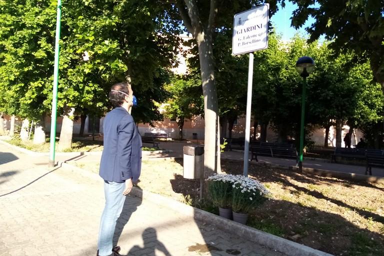 Margherite in onore del Giudice Giovanni Falcone. <span>Foto Cosma Cacciapaglia</span>