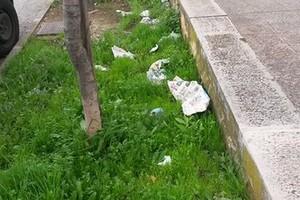 rifiuti giardini