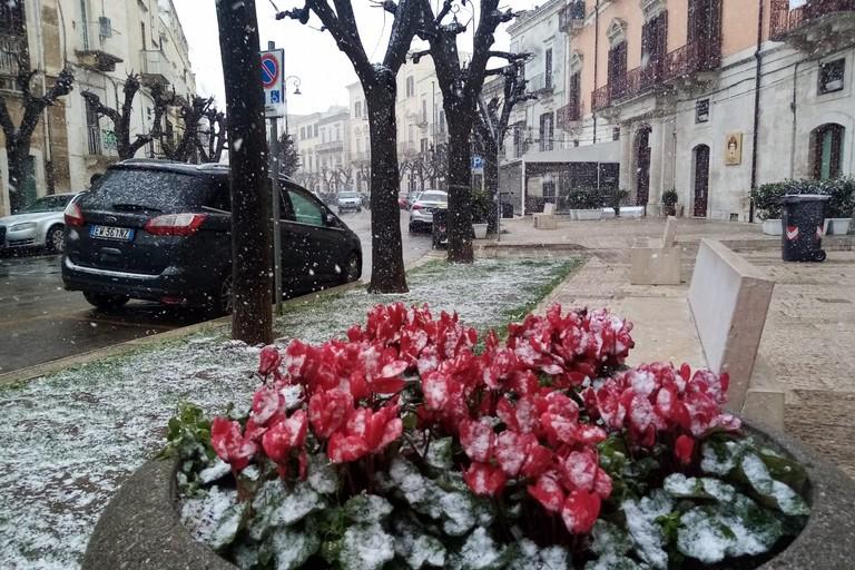 Nevica a Terlizzi. <span>Foto Cosma Cacciapaglia</span>