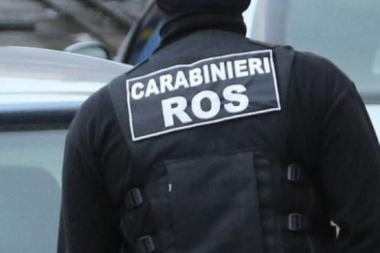 Maxiblitz del Ros, 104 arresti: in manette anche diversi esponenti di Terlizzi