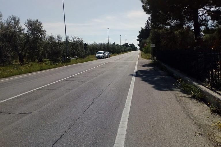 Strada Molfetta-Terlizzi. <span>Foto Cosma Cacciapaglia</span>