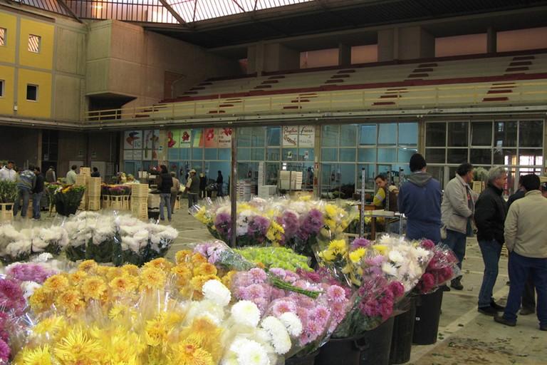 mercato fiori